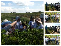 Alunos do curso Agricultor Familiar do CAB fazem visita técnica