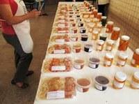 Curso - Produtor de Frutas e Hortaliças processadas no uso do Calor